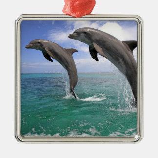 Delfin,Delphin,Grosser Tuemmler,Tursiops 4 Christmas Ornament