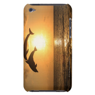 Delfin,Delphin,Grosser Tuemmler,Tursiops Barely There iPod Case