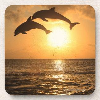 Delfin,Delphin,Grosser Tuemmler,Tursiops Beverage Coaster