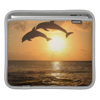 Delfin,Delphin,Grosser Tuemmler,Tursiops iPad Sleeve