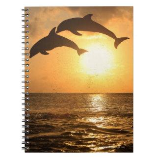 Delfin,Delphin,Grosser Tuemmler,Tursiops Notebook