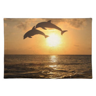 Delfin,Delphin,Grosser Tuemmler,Tursiops Placemat