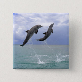Delfin (Grosser Tuemmler) 15 Cm Square Badge