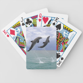 Delfin (Grosser Tuemmler) Bicycle Playing Cards