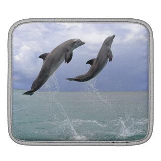 Delfin (Grosser Tuemmler) iPad Sleeve