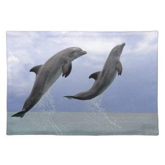 Delfin (Grosser Tuemmler) Placemat