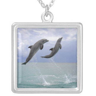 Delfin (Grosser Tuemmler) Silver Plated Necklace