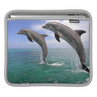 Delfin iPad Sleeve