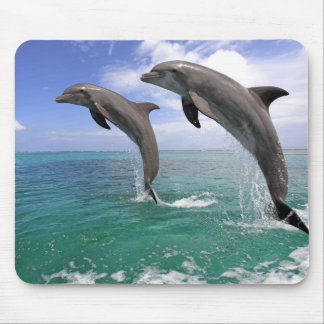 Delfin Mouse Pad