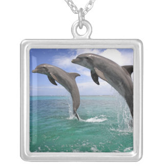 Delfin Silver Plated Necklace