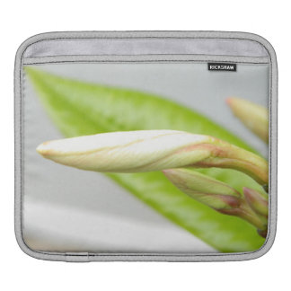 Delicate budding flower floral photography iPad sleeve