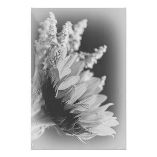 Delicate Contrast 2 Photographic Print