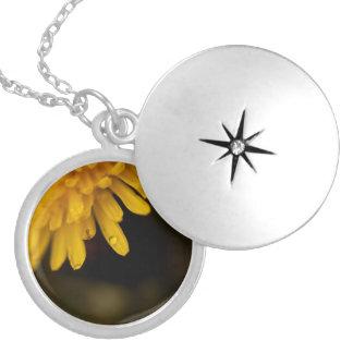Delicate Dandelion Round Locket Necklace