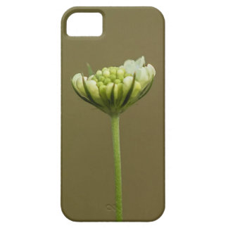 delicate flower iPhone 5 case