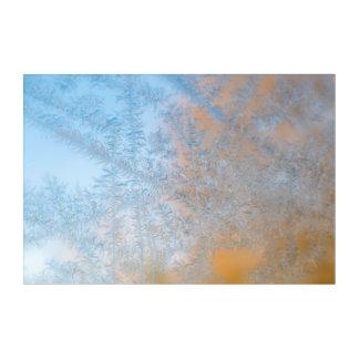 Delicate frost pattern, Wisconsin Acrylic Wall Art