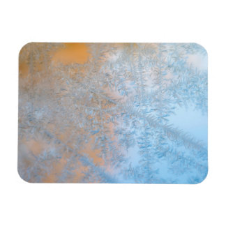 Delicate frost pattern, Wisconsin Rectangular Photo Magnet