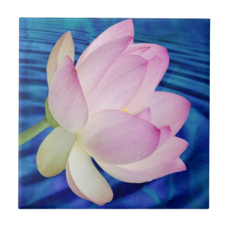 Delicate Lotus flower and meaning Tile