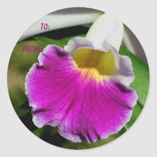 Delicate Orchid Flower Photo Gift Tag Sticker