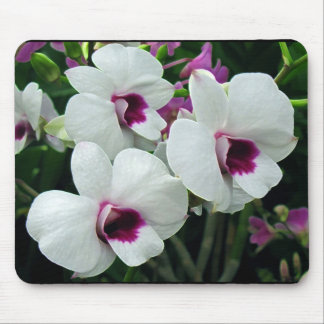 Delicate orchids, white and purple mouse mat