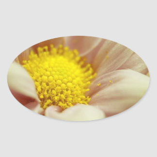Delicate Peach and Yellow Flower Sticker