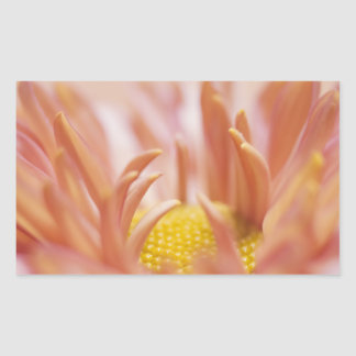 Delicate Peach Flower Rectangle Stickers
