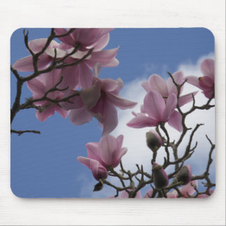 DELICATE PINK MAGNOLIAS IN SPRING BLOOM MOUSE PADS