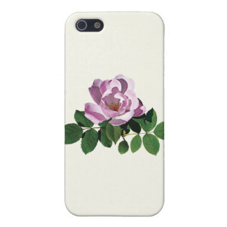 Delicate Pink Rose Cases For iPhone 5