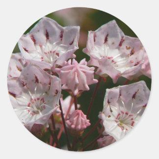 Delicate Pink Round Sticker