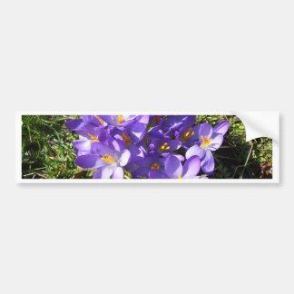 Delicate Purple Flowers CricketDiane Florals Bumper Sticker
