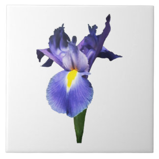 Delicate Purple Iris Large Square Tile