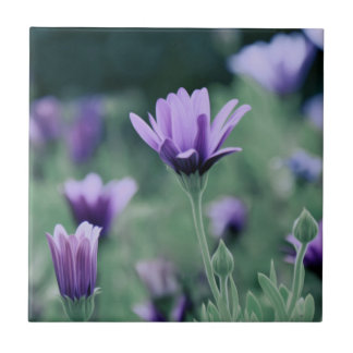 Delicate Purple Lavender Flowers Tile