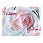 Delicate rose with marble effects postcard