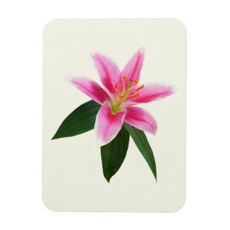 Delicate Stargazer Lily Flexible Magnet