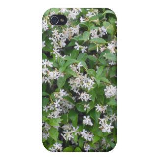 Delicate Tiny White Star Flowers Green Leaves iPhone 4 Cover