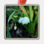 Delicate White Alleghany Spurge Flowers Christmas Ornament