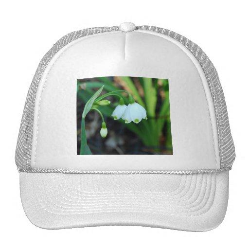 Delicate White Alleghany Spurge Flowers Mesh Hat