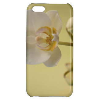 Delicate White Orchid Cover For iPhone 5C