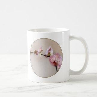 Delicate White Phalaenopsis Orchids Mugs