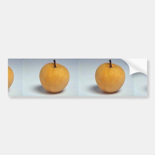 Delicious Apricot Bumper Stickers