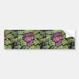 Delicious grapes fruit bumper stickers