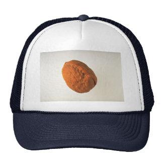Delicious Walnut Mesh Hats