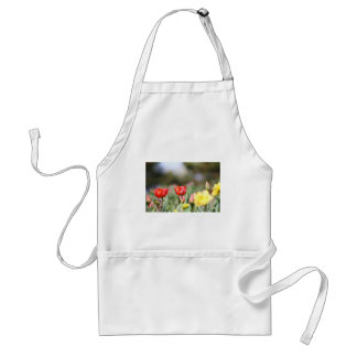 Delightful Tulips Aprons