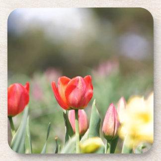 Delightful Tulips Beverage Coasters