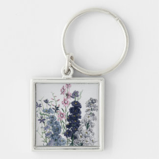 Delphiniums, from 'The Ladies' Flower Garden' Key Ring