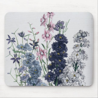 Delphiniums, from 'The Ladies' Flower Garden' Mouse Mat