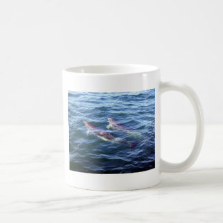 Delphinus delphis mugs