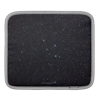 Delphinus iPad Sleeve