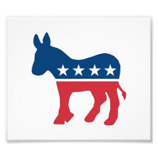 Democratic Donkey Photographic Print