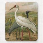 Demoiselle and Siberian Cranes Mousepads