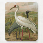 Demoiselle and Siberian Cranes Vintage Bird Mouse Pad